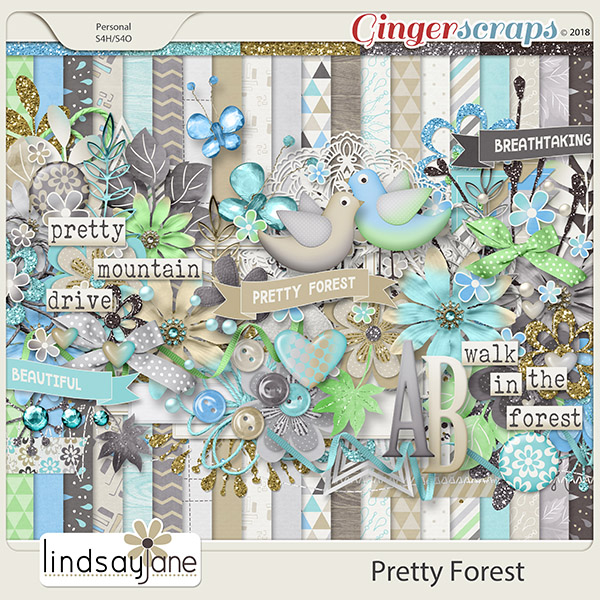 Pretty Forest by Lindsay Jane