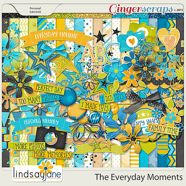 The Everyday Moments by Lindsay Jane