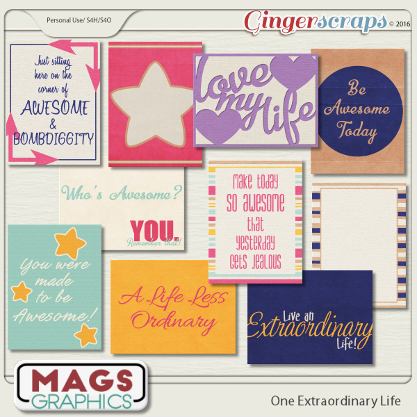 One Extraordinary Life JOURNAL CARDS