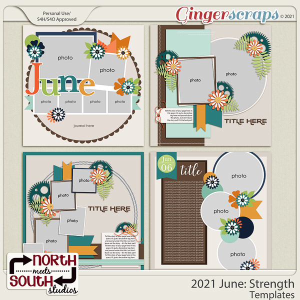 2021 June: Strength Templates by North Meets South Studios