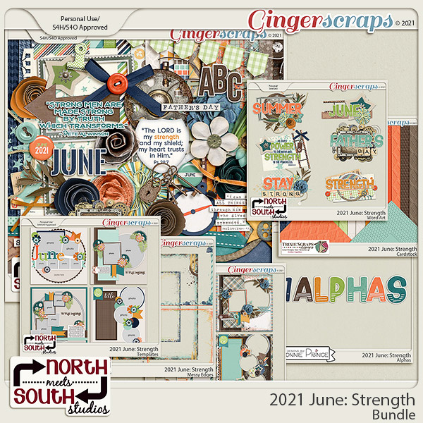 2021 June: Strength Bundle by North Meets South Studios