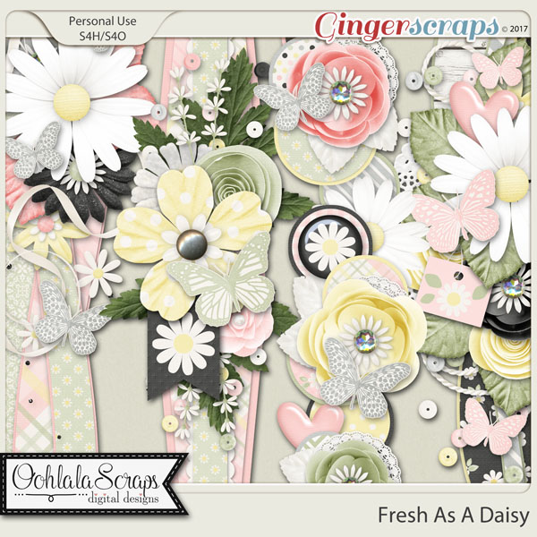 Fresh As A Daisy Page Borders