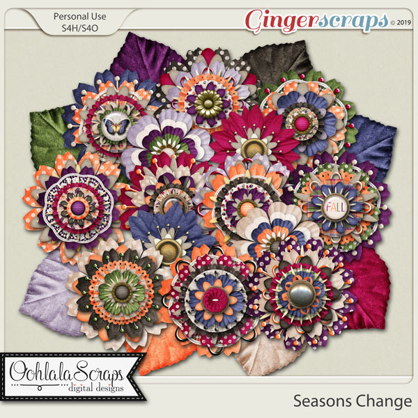 Seasons Change Flowers