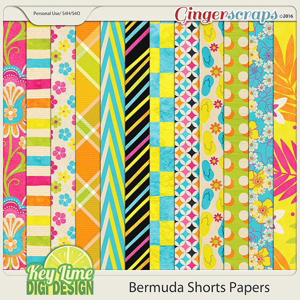 Bermuda Shorts Papers
