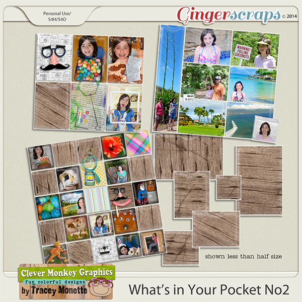 What's in Your Pocket 2 by Clever Monkey Graphics