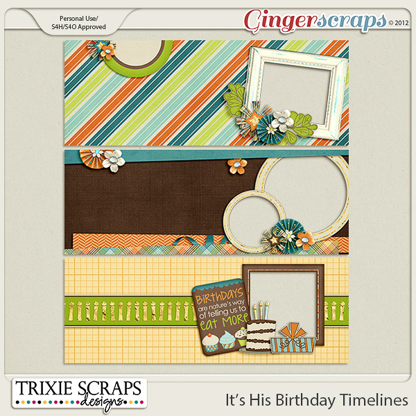 It's His Birthday Timeline Covers by Trixie Scraps Designs