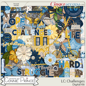 Life Chronicled: Challenges - Kit by Connie Prince