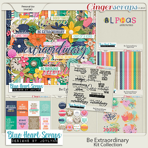 Be Extraordinary Kit Collection Bundle