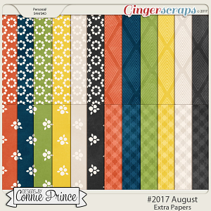 #2017 August - Extra Papers