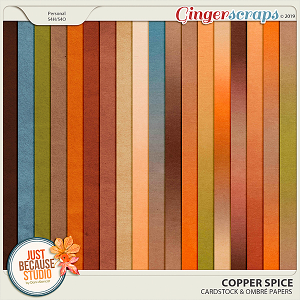 Copper Spice Cardstocks & Ombré Papers by JB Studio