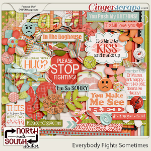 Everybody Fights Sometimes by North Meets South Studios