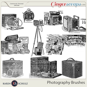Photography Brushes by Karen Schulz