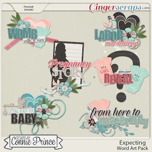 Expecting - Word Art Pack