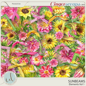 Sunbeams Vol 1 Elements by Ilonka's Designs