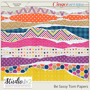 Be Sassy Torn Papers