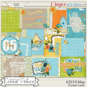 #2019 May - Pocket Cards by Connie Prince