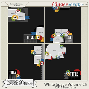 White Space Volume 25 - 12x12 Temps (CU Ok) by Connie Prince