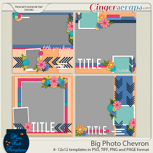 Big Photo Chevron Templates by Miss Fish