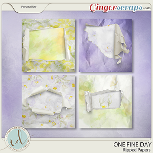 One Fine Day Ripped Papers by Ilonka's Designs