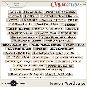 Freedom Word Strips by Karen Schulz