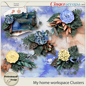 My home workspace Clusters