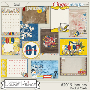 #2019 January - Pocket Cards by Connie Prince
