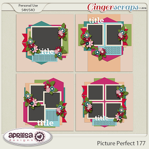 Picture Perfect 177 by Aprilisa Designs