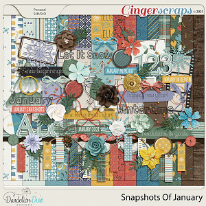 Snapshots Of January by Dandelion Dust Designs