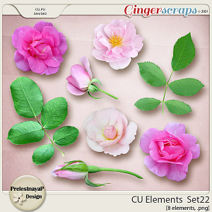 CU Elements Set22 by PrelestnayaP Design