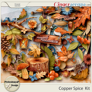 Copper spice Kit