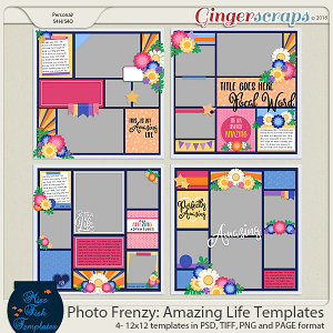 Photo Frenzy: Amazing Life Templates by Miss Fish