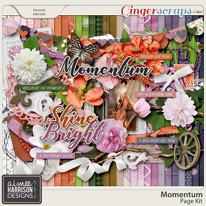 Momentum Page Kit by Aimee Harrison