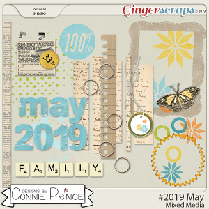 #2019 May - Mixed Media by Connie Prince