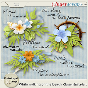 While walking on the beach Clusters&Wordart