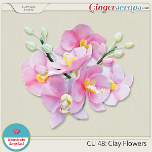 CU 48 - Clay flowers - orchid