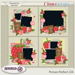 Picture Perfect 224 by Aprilisa Designs