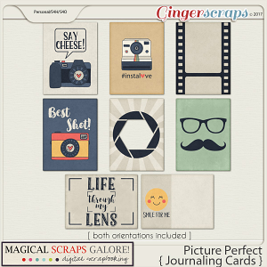 Picture Perfect (journaling cards)