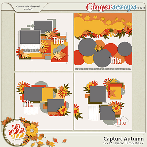Capture Autumn Templates by JB Studio