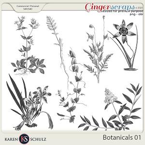 Botanicals 01 by Karen Schulz