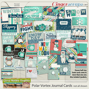 Polar Vortex Journal Cards by Clever Monkey Graphics