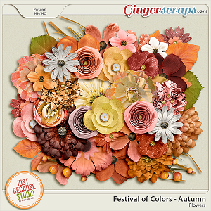 Festival of Colors: Autumn Flowers by JB Studio