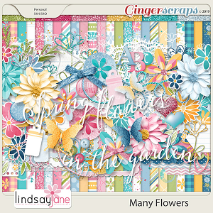 Many Flowers by Lindsay Jane