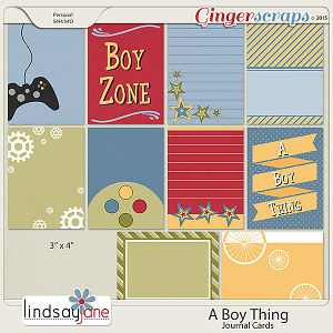 A Boy Thing Journal Cards by Lindsay Jane
