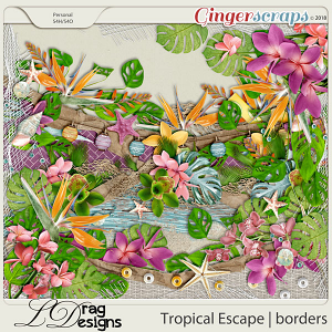 Tropical Escape: Borders by LDragDesigns