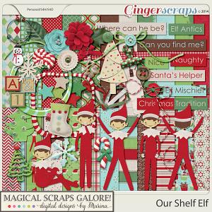 Our Shelf Elf