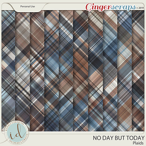 No Day But Today Plaids by Ilonka's Designs