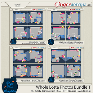 Whole Lotta Photos Template Bundle 1 by Miss Fish