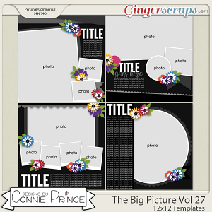 The Big Picture Volume 27 - 12x12 Temps (CU Ok) by Connie Prince