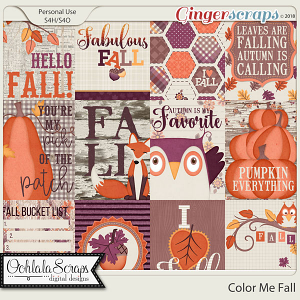 Color Me Fall Pocket Scrap Cards