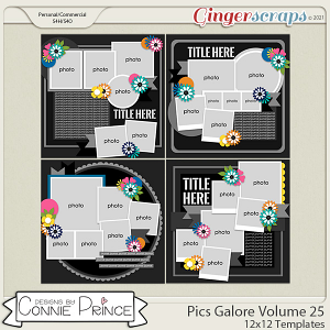 Pics Galore Volume 25- 12x12 Temps (CU Ok) by Connie Prince